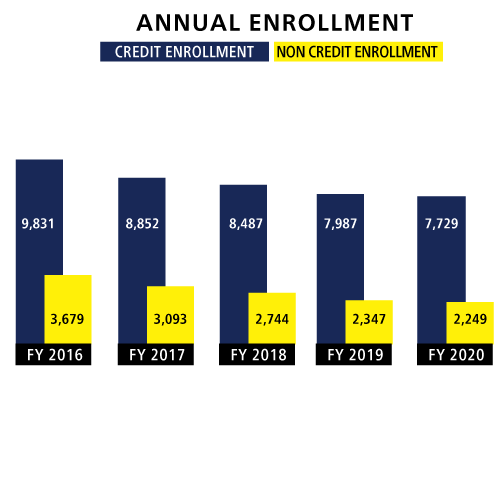 graph annual enrollment credit or noncredit