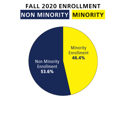 graph minority and nonminority enrollment
